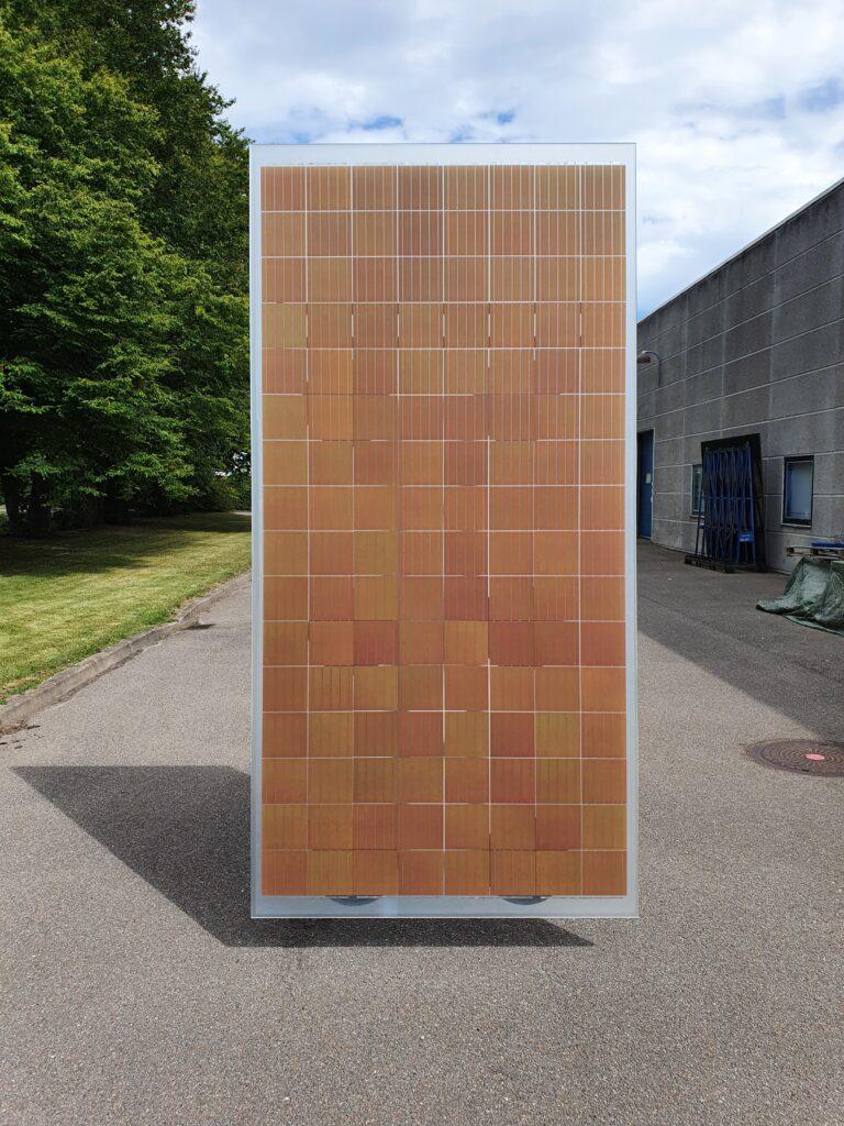 Roskilde B. panel 20200806_150528